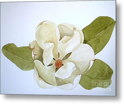 Metal Print featuring the painting Magnolia Highlight by Nancy Kane Chapman