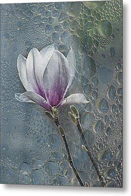 Magnolia Metal Print by Joachim G Pinkawa