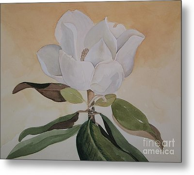 Metal Print featuring the painting Magnolia Morning by Nancy Kane Chapman