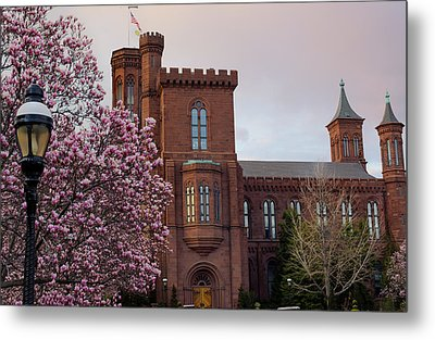 Magnolias Near The Castle Metal Print by Andrew Pacheco