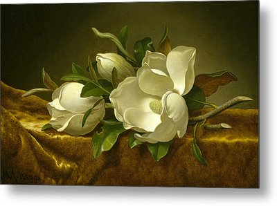 Magnolias On Gold Velvet Cloth Metal Print