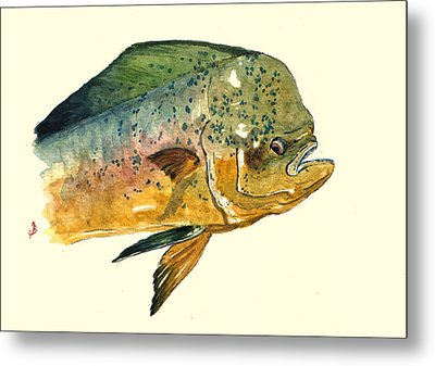 Mahi Mahi Fish Metal Print by Juan  Bosco