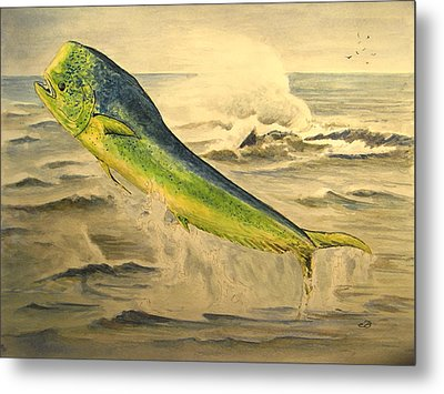 Mahi Mahi Metal Print by Juan  Bosco
