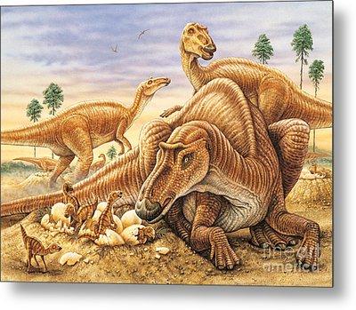Maiasaura And Nest Metal Print