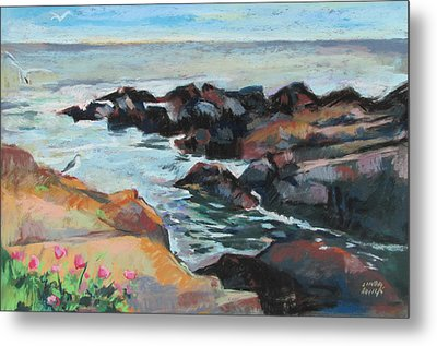 Maine Coast Rocks And Birds Metal Print by Linda Novick
