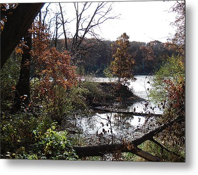 Metal Print featuring the photograph Majestic Fall by J L Zarek