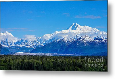 Majestic Mt Mckinley Metal Print by Jennifer White