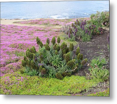 Majestic Shoreline Metal Print by Joseph Baril