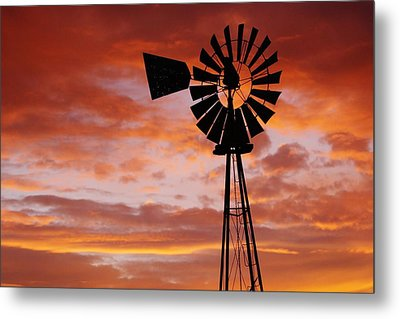 Majesty In The Sky Metal Print by Shirley Heier