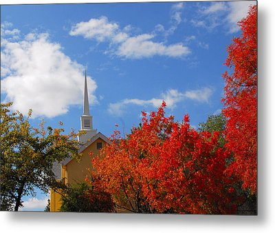 Metal Print featuring the photograph Majesty by Lynn Bauer