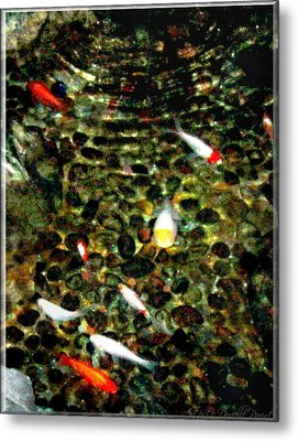 Make A Wish Koi Fishes Metal Print by Danielle  Parent