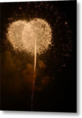 Metal Print featuring the photograph Make A Wish by Linda Mishler