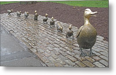 Make Way For Ducklings Metal Print by Barbara McDevitt