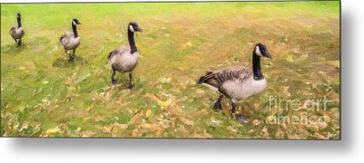 Make Way For Geese Metal Print by Liz Leyden
