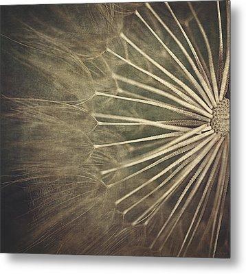 Making A Wish...  Metal Print by Maria Angelica Maira