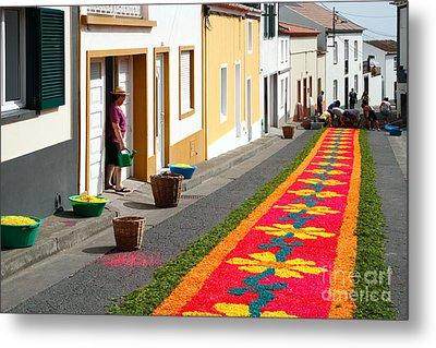 Making Flower Carpets Metal Print by Gaspar Avila