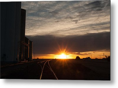 Tracking The Light Metal Print by Shirley Heier