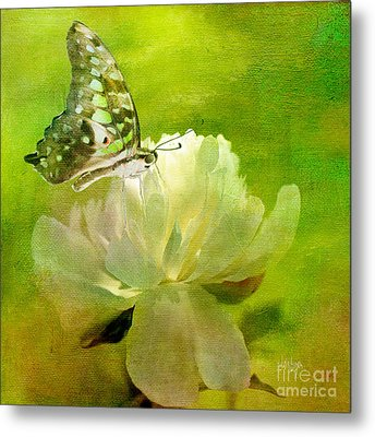 Malachite On Peony Metal Print by Lois Bryan