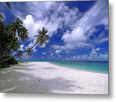 Maldives 03 Metal Print by Giorgio Darrigo