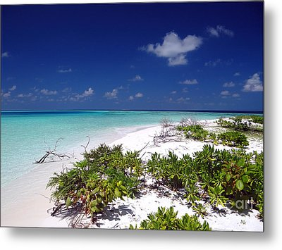 Maldives 07 Metal Print by Giorgio Darrigo