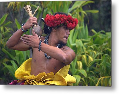 Male Hula Dancer With Small Gourd Instrument Metal Print by Lori Seaman