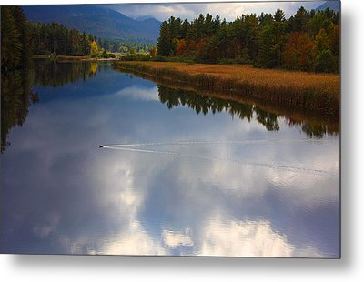 Metal Print featuring the photograph Mallard Duck On Lake In Adirondack Mountains In Autumn by Jerry Cowart