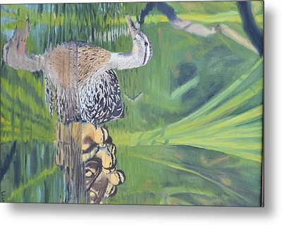 Mallard Hen And Young Metal Print