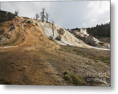 Metal Print featuring the photograph Mammoth Hot Springs by Belinda Greb