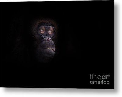 Man In The Mask Metal Print by Ashley Vincent