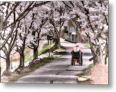 Man In Wheelchair Under Cherry Blossoms Metal Print by Dan Friend