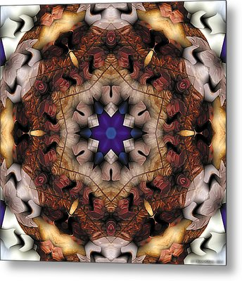 Metal Print featuring the digital art Mandala 16 by Terry Reynoldson