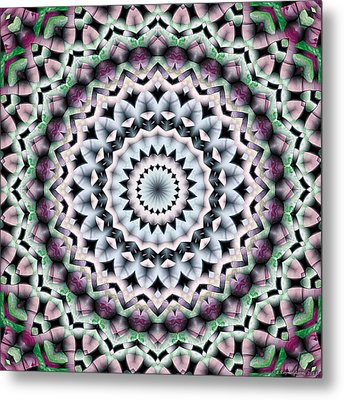 Mandala 40 Metal Print by Terry Reynoldson