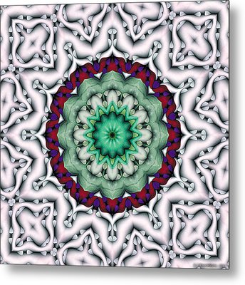 Mandala 8 Metal Print by Terry Reynoldson