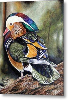 Mandarin Duck Metal Print by Amanda Hukill
