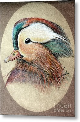 Mandarin Wood Duck Metal Print by Joey Nash