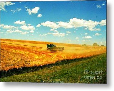 Mankato Nebraska Wheat Harvest Metal Print