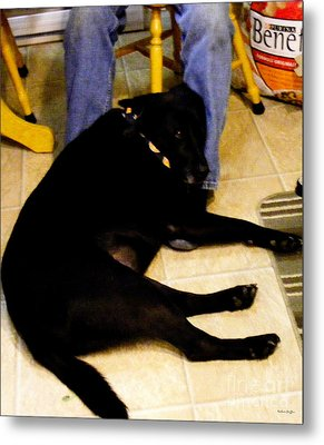 Metal Print featuring the photograph Man's Best Friend by Barbara Griffin