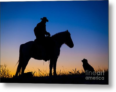 Man's Best Friend Metal Print by Inge Johnsson