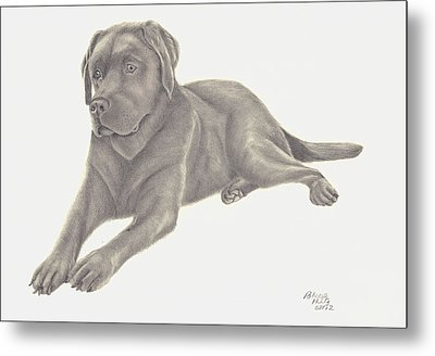 Metal Print featuring the drawing Man's Best Friend by Patricia Hiltz