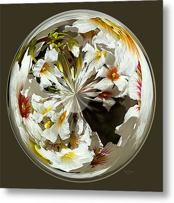 Many Colored Centers Metal Print by Phyllis Denton