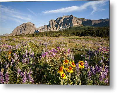 Metal Print featuring the photograph Many Glacier Spring by Jack Bell