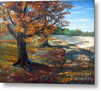 Maple Lane Metal Print