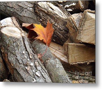 Maple Leaf In Wood Pile Metal Print