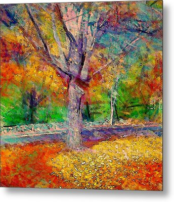 Maple Tree In Autumn - Square Metal Print