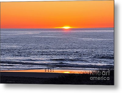 Metal Print featuring the photograph Marbled Godwits Reflecting A Sunset by Susan Wiedmann
