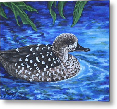 Marbled Teal Duck On The Water Metal Print by Penny Birch-Williams