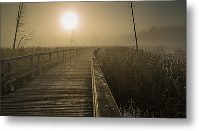 Marsh Morning Metal Print