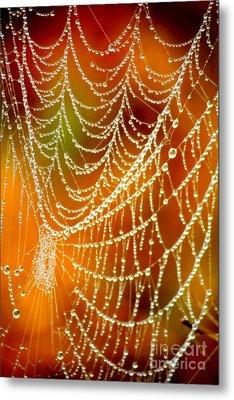 Marsh Pearls Metal Print by Carol Groenen