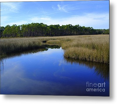 Marsh Water Creek Metal Print by Lew Davis
