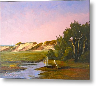 Marshlands Plymouth Landing Metal Print by Betty Ann Morris